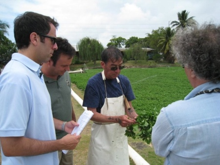 The Travel Guys with David Sumida and Chef Mavro May 27, 2009